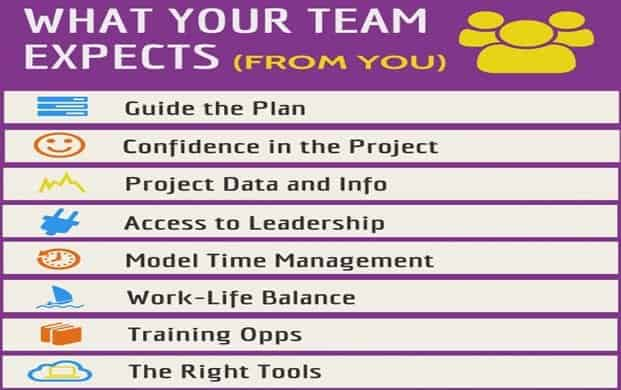 What Project Teams Expect From You